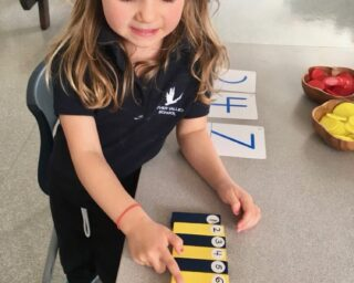 Mathematics in the Early School Years